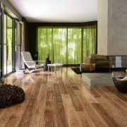 COLONIAL SPOTTED GUM IMAGE1